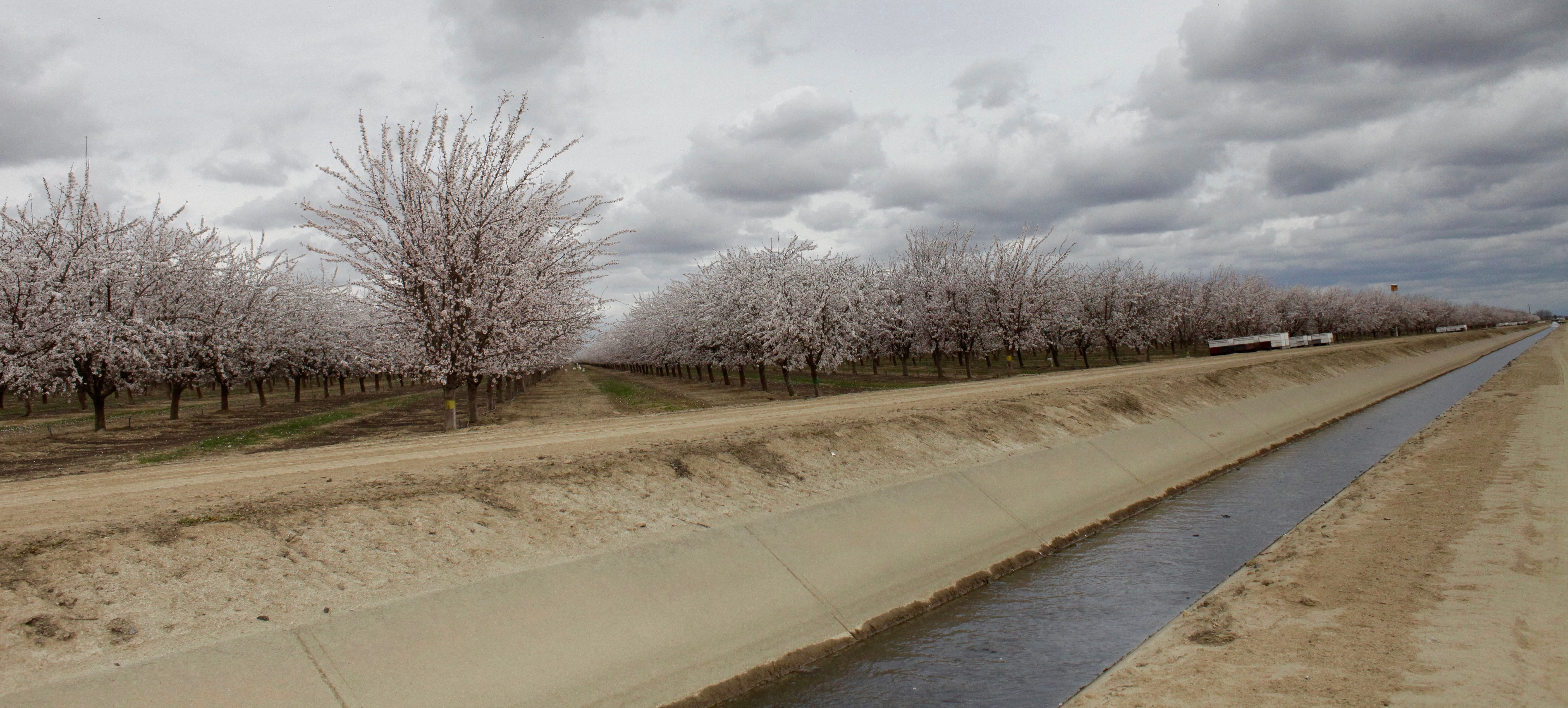 almonds-canal