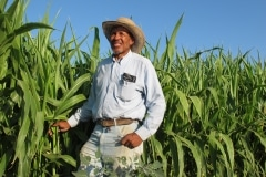 African-American Farmers